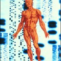 human_genome_sciencephotolibrary
