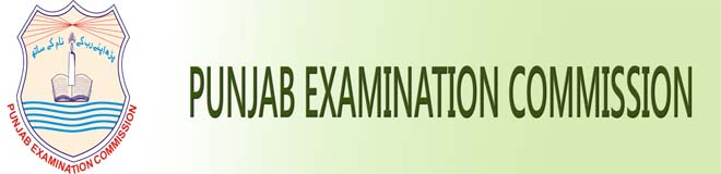 Punjab Education Commission 5th Class Result 2013 Announced