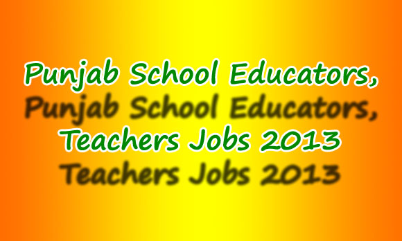 Punjab School Educators Jobs Instructions, Terms & Conditions
