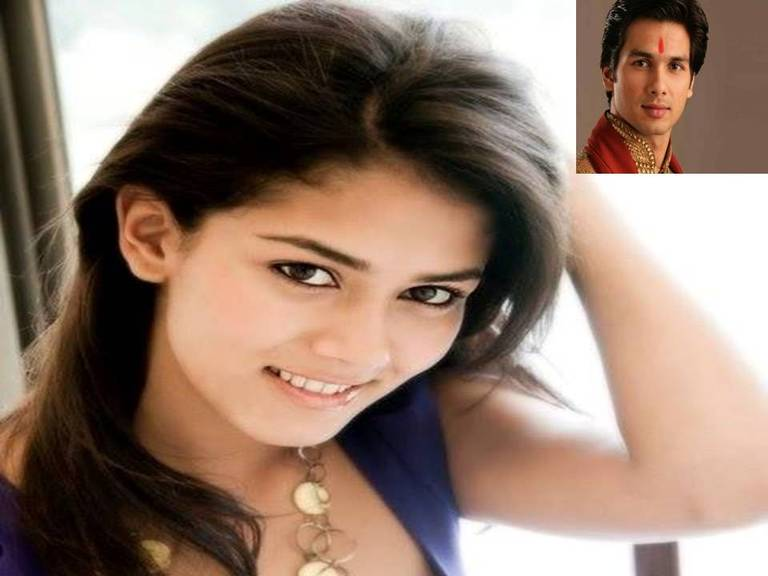 Shahid Kapoor Marriage With Meera Rajpoot